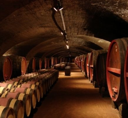 Wines and châteaux, half-day tour