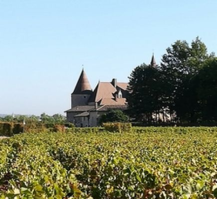 "Beaujolais north ""Crus and Château de Pizay"" Tour - Half-day"