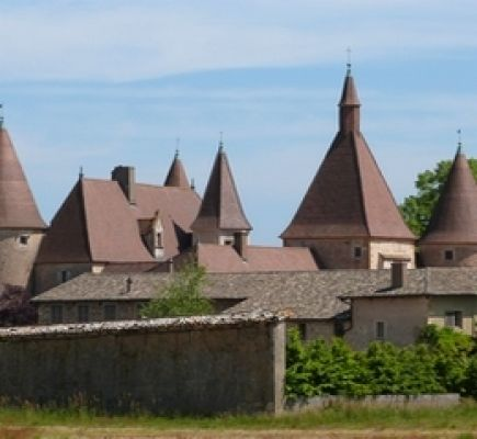 The chateaux of Beaujolais - Half day
